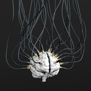 BrainResearch-300x300